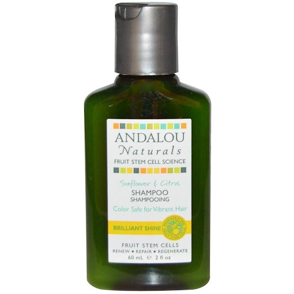 Andalou Naturals, Shampoo, Sunflower & Citrus, 2 fl oz (60 ml) (Discontinued Item)