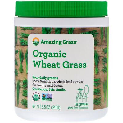 Купить Amazing Grass Органические ростки пшеницы, 240г