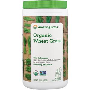 Амайзинг Грас, Organic Wheat Grass, 17 oz (480 g) отзывы покупателей