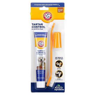 Arm & Hammer, Tartar Control, Dental Kit for Dogs, Beef, 3 Piece Kit