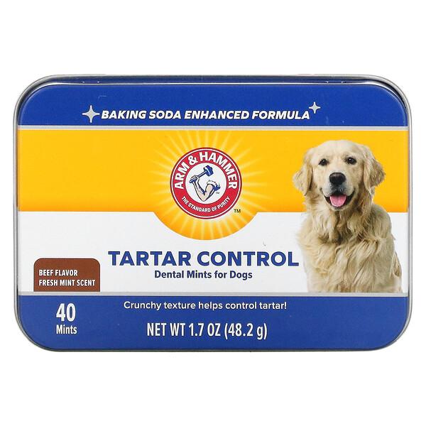 Tartar Control Dental Mints For Dogs, Fresh Mint Scent, Beef, 40 Mints