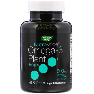 Купить Ascenta NutraVege, омега-3 растительного происхождения, 500мг, 30мягких таблеток