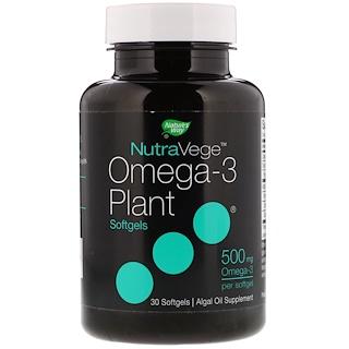 Ascenta, NutraVege, Omega-3 Plant, 500 mg, 30 Softgels