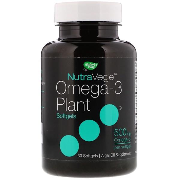 Ascenta, ナチュラヴィージュ、植物性オメガ-3、500mg、ソフトカプセル30錠