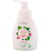 ATTITUDE, Super Leaves Science, Natural Foaming Hand Soap, Red Vine Leaves, 10 fl oz (295 ml)