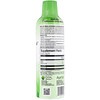 Aurora Nutrascience, Acide lipoïque R-Alpha méga liposomal, saveur de fruit biologique, 750 mg, 480 ml (16 oz liq.)