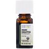 Aura Cacia, Pure Essential Oil, Organic Eucalyptus, 0.25 fl oz (7.4 ml)