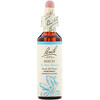 Bach, Original Flower Remedies, Beech, 0.7 fl oz (20 ml)