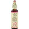 Bach, Original Flower Remedies, Star of Bethlehem, 0.7 fl oz (20 ml)