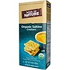 Back to Nature, Organic Saltine Crackers, 8 oz (226 g) (Discontinued Item)