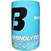 Beast Sports Nutrition, Aminolytes, Advanced Amino Matrix, Pineapple Flavor, 15.08 oz (428 g) (Discontinued Item)