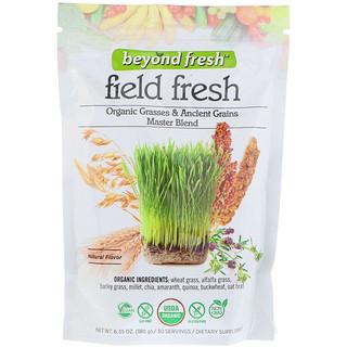 Beyond Fresh, Field Fresh, مزيج الأعشاب العضوية والحبوب القديمة الرئيسي، نكهة طبيعية، 6.35 أوقية (180 غرام)