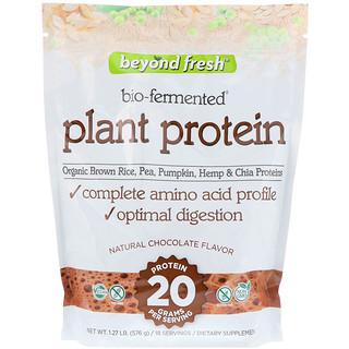 Beyond Fresh, بروتين نباتي، نكهة الشوكولاتة الطبيعية، 1.27 رطل (576 جم)