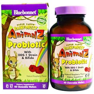 Bluebonnet Nutrition, Супер Земля, пробиотик «Животные тропических лесов», натуральный малиновый вкус, 60 жевательных пластинок