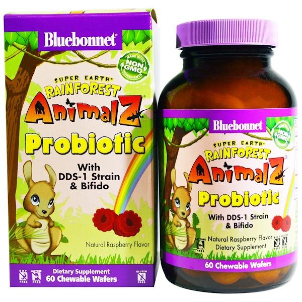 Bluebonnet Nutrition, Super Earth, Rainforest Animalz Probiotic, Natural Raspberry Flavor, 60 Chewable Wafers (Discontinued Item)