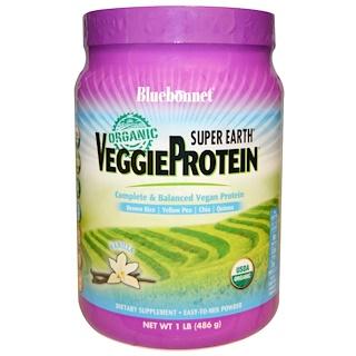 Bluebonnet Nutrition, Organic, Super Earth, Veggie Protein, Vanilla, 1 lb (486 g)