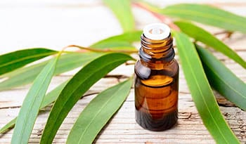 10 Essential Oils for Respiratory Infections