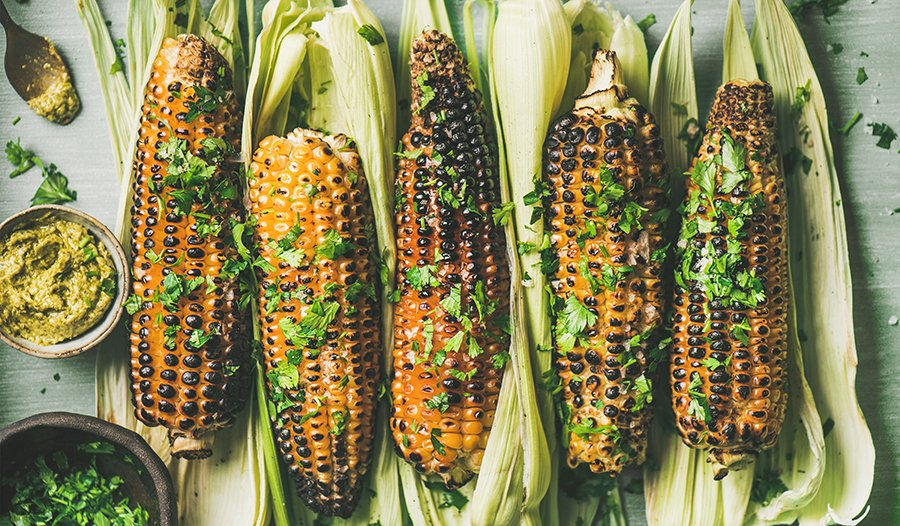 Grilled corn on the cob and cilantro on wooden table