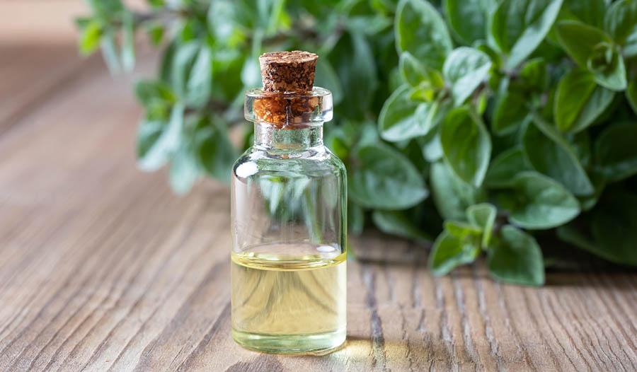 Mejore su salud en general con el aceite de orégano