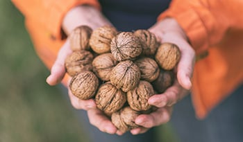 Eat More of This Nut To Improve Your Digestion