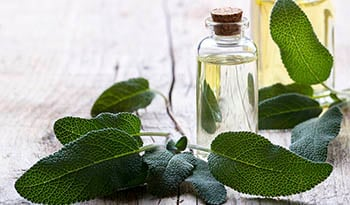 Essential Oils and Aromatherapy • Aromatherapy Oils | iHerb - iHerb com