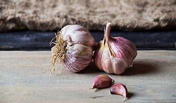 Garlic, Cholesterol and Immune Function