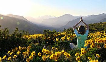 Benefícios da arnica montana para a saúde
