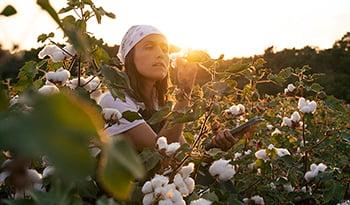 Cámbiese a los productos orgánicos de higiene femenina