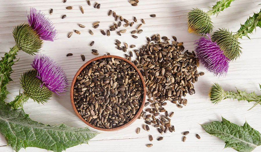 Milk Thistle Extract and Detoxification