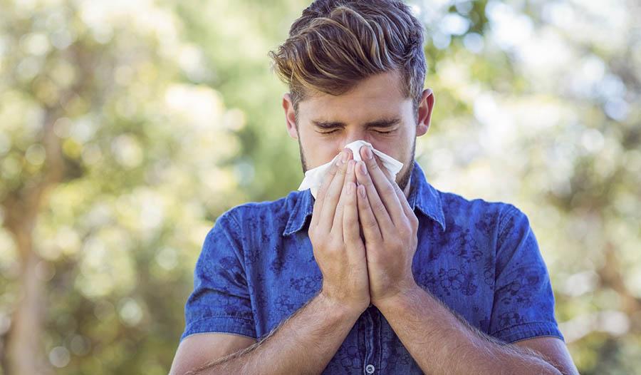 Oil of Oregano for Cold and Flu Season