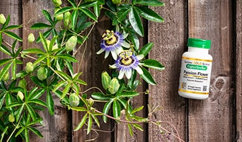 Have You Heard of Passionflower? 5 Surprising Health Benefits