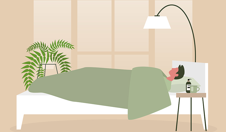 Male asleep in bed with plant in room vector art
