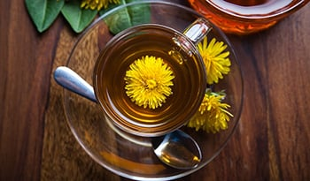 The Health Benefits of Dandelion Root