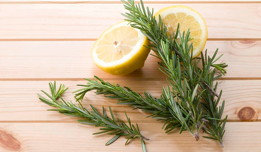 The Health Benefits of Rosemary