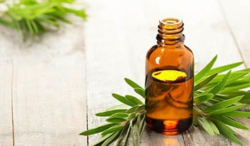 Top 13 Essential Oils and How They Can Benefit Your Health