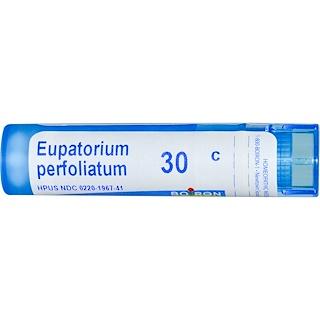 Boiron, Single Remedies, Eupatorium Perfoliatum, 30C, 80 Pellets