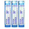 Boiron, Single Remedies, Arnica, Pain Relief, 30C, 3 Tubes, Approx. 80 Pellets Each