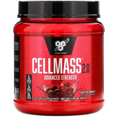 Cellmass 2.0, концентрированное средство для восстановления после тренировки, арктические ягоды, 495 г (1,09 фунта)