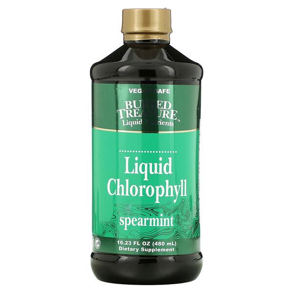 Buried Treasure, Liquid Chlorophyll, Spearmint, 16.23 fl oz (480 ml)