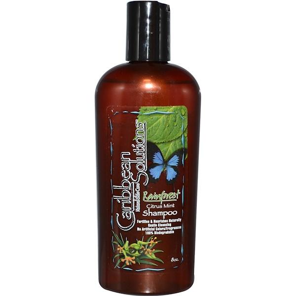 Caribbean Solutions, Rainforest Citrus Mint Shampoo, 8 oz (Discontinued Item)