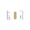 California Gold Nutrition, Fungiology, трутовик різнокольоровий повного спектру, 90вегетаріанських капсул