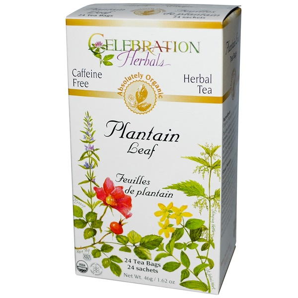 Celebration Herbals, Herbal Tea, Plantain Leaf, Caffeine Free, 24 Tea Bags, 1.62 oz (46 g) (Discontinued Item)