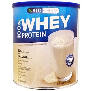 Country Life, BioChem, 100% 유장 단백질, 천연의 맛, 24.6 oz (699 g)