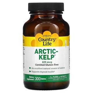 Country Life, Arctic-Kelp, арктические бурые водоросли, 225мкг, 300таблеток
