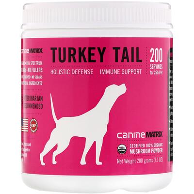 Turkey Tail, Mushroom Powder, 7.1 oz (200 g)