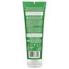 Desert Essence, Conditioner, Green Apple & Ginger, 8 fl oz (237 ml)