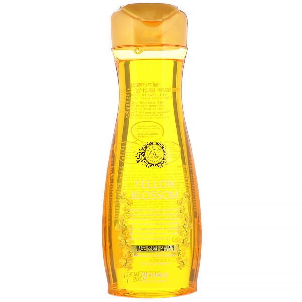 Doori Cosmetics, YellowBlossom, Shampoing de soin contre la perte des cheveux, 400ml