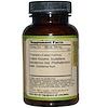 Dragon Herbs, Coptis & Scute, 500 mg, 100 cápsulas vegetales