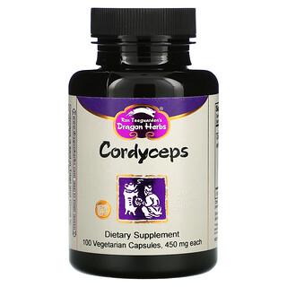 Dragon Herbs, Cordyceps, 500 mg, 100 Vegetarian Capsules