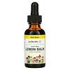 Eclectic Institute, Kids Herbs, Lemon Balm, Lemon Flavor, 1 fl oz (30 ml)